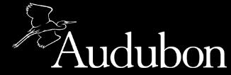 Audubon Website Logo